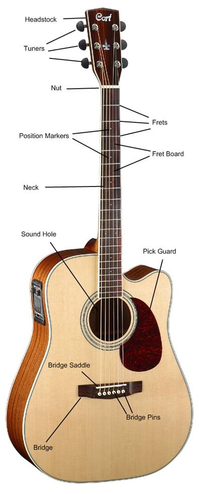 parts of acoustic guitar